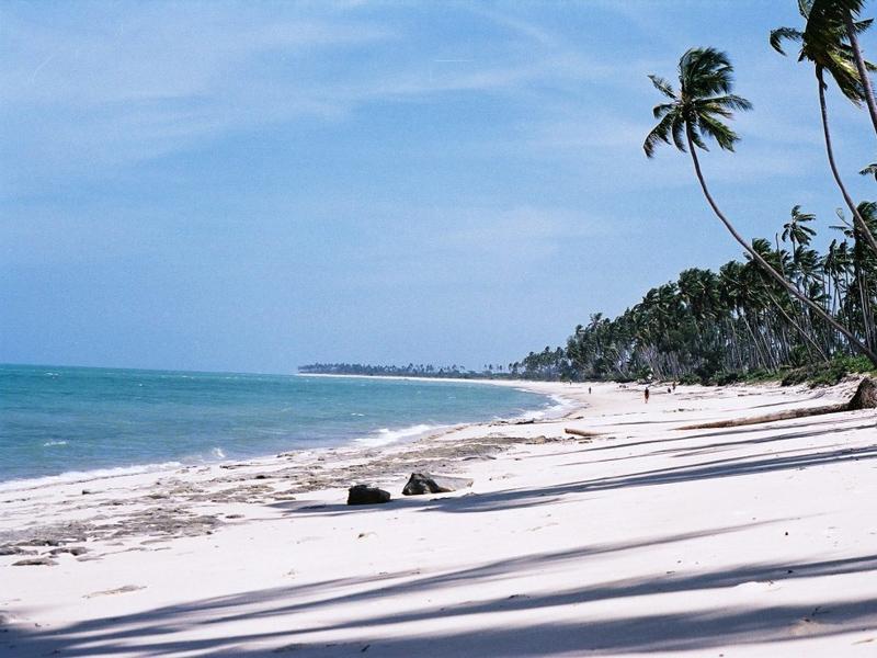 Guludo Shoreline