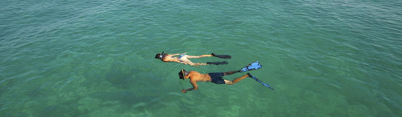 mozambique snorkelling