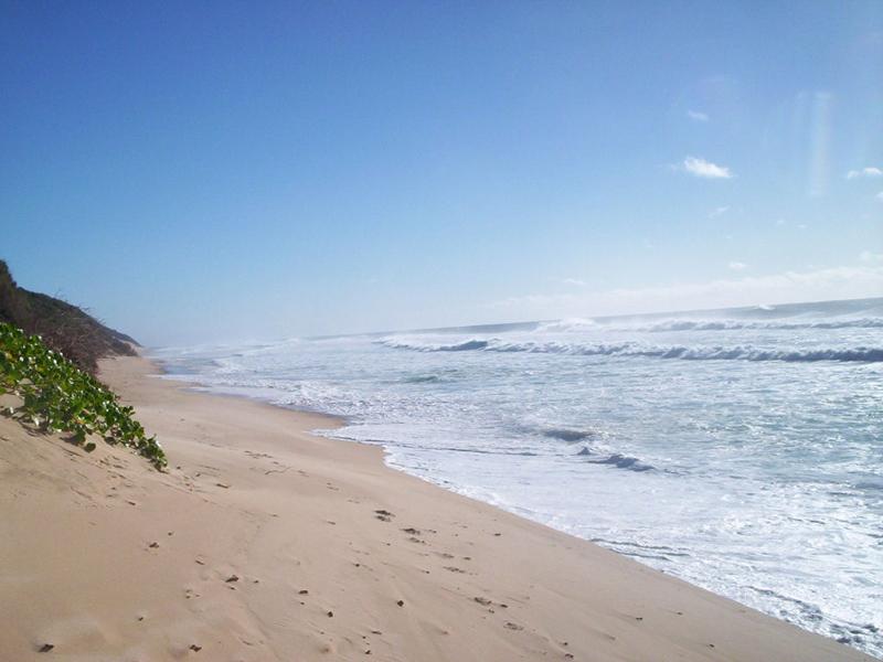 Mar e Sol Sandhill