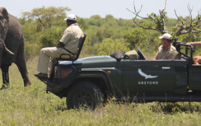 Safari & Beach Mozambique