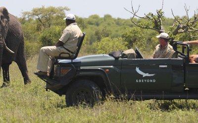 Safari in Mozambique