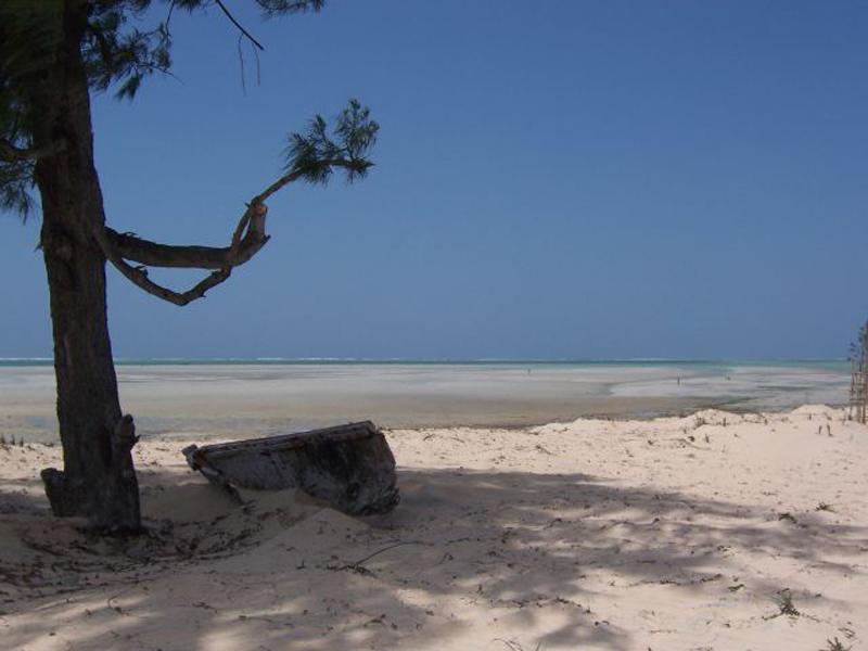 Ulala Lodge Shoreline