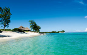 Vamizi Island Ultimate Luxury Longstay Image