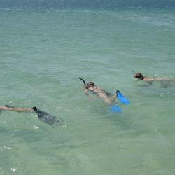 Vila Do Paraiso snorkelling Vilanculos