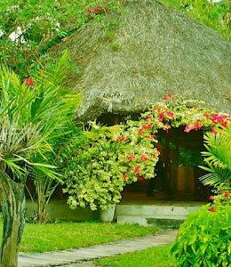 Palmeiras Lodge