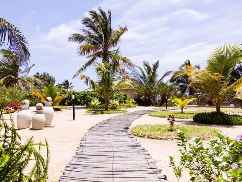 Barra-Beach-Club-Garden