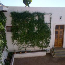 Jardim Dos Aloes