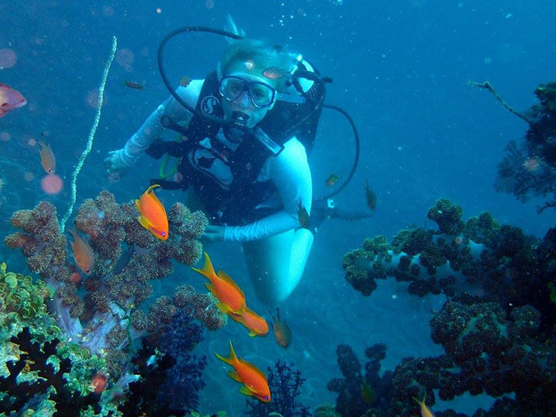 Situ Island Resort diver in reefs