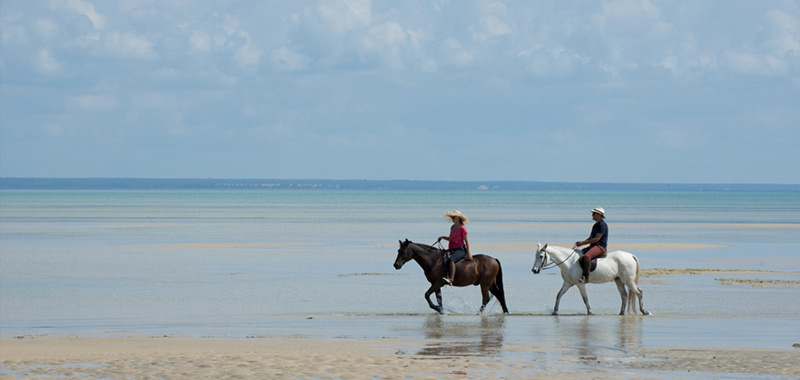 Swimming-with-Horses-Activities-Benguerra-Island
