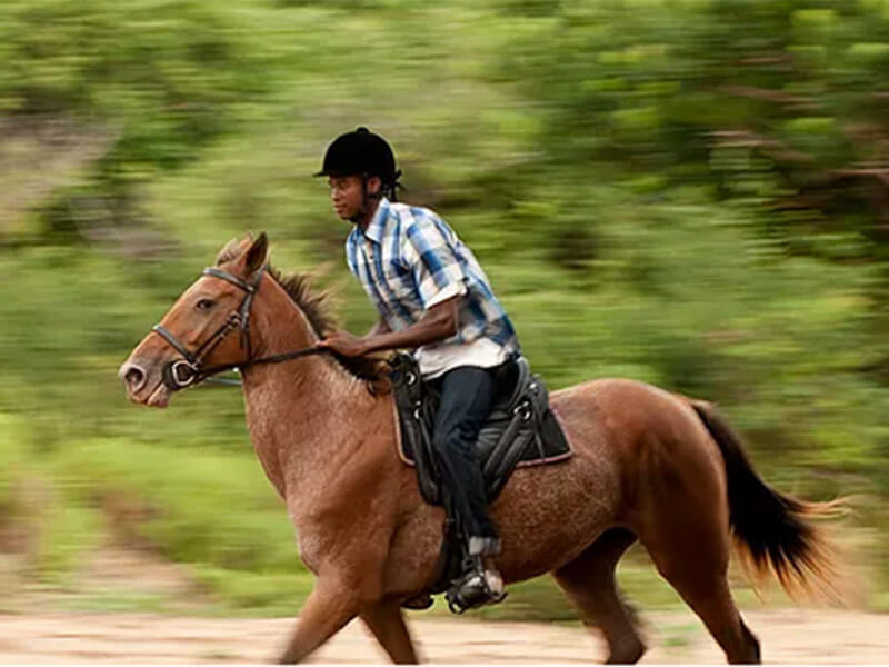 WHITE PEARL RESORT – HORSE RIDING
