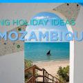 Amazing Holiday Ideas