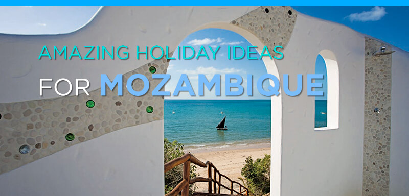 Amazing Holiday Ideas