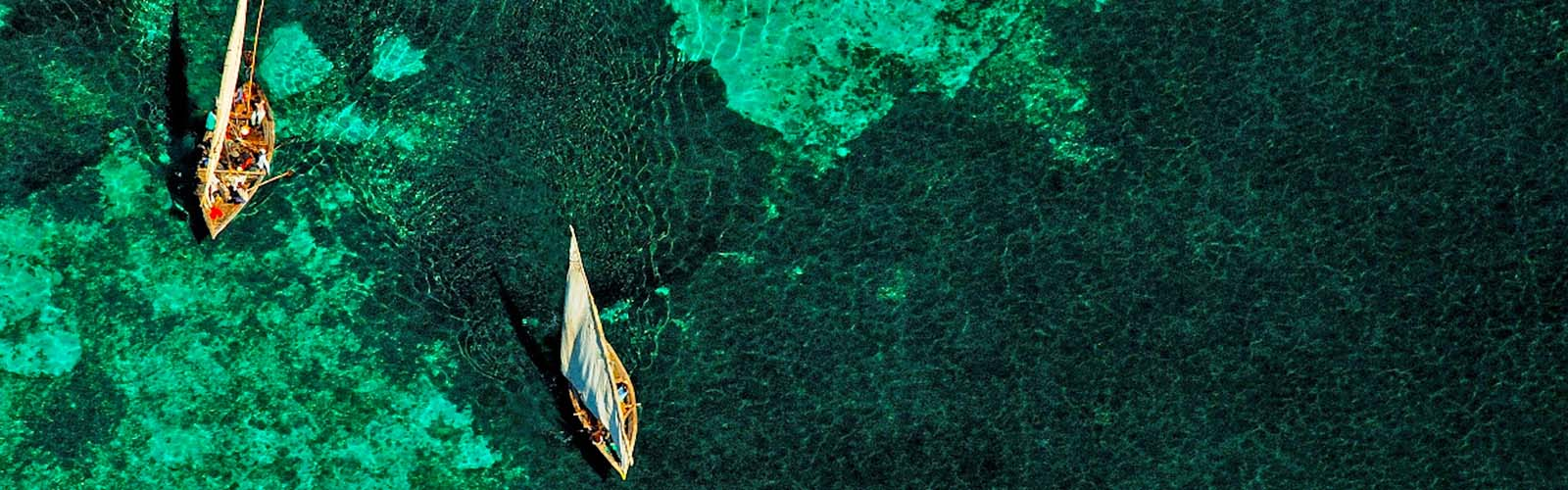 Mozambique Dhow safari